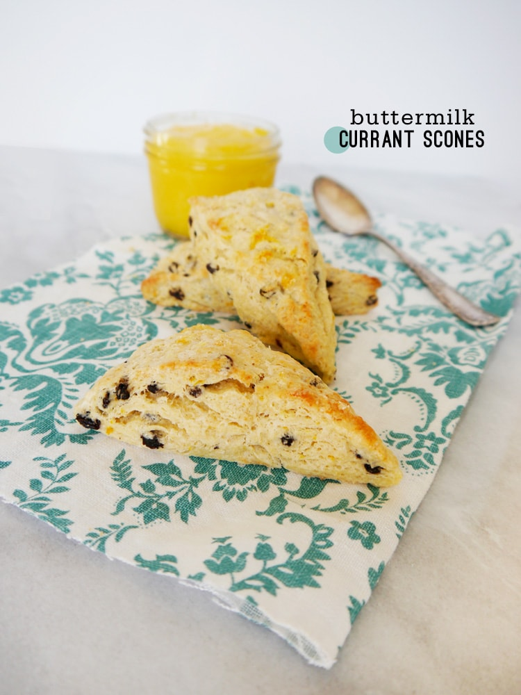 Buttermilk Currant Scones by Freutcake Buttermilk Currant Scones