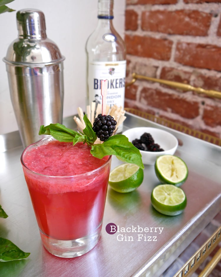 Blackberry Gin Fizz {Cocktail Friday} Blackberry Gin Fizz