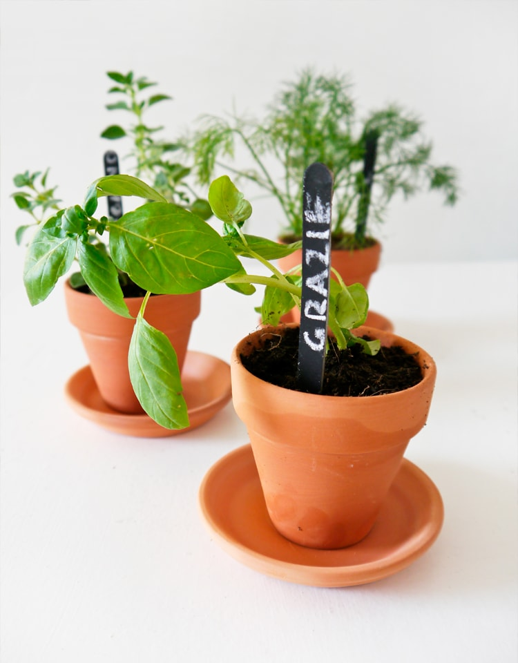 DIY-Chalkboard-Herb-Markers-4