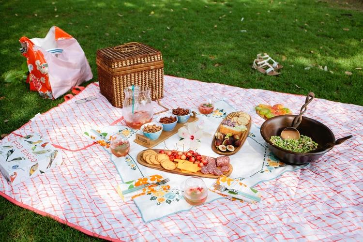 Freutcake-Picnic-Party-2