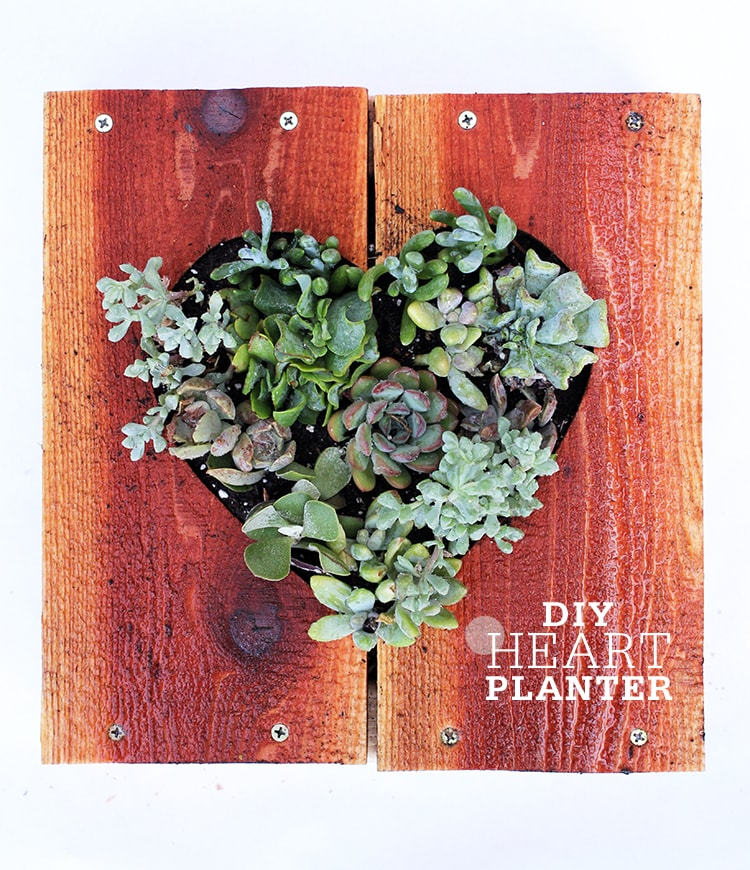 diy heart shaped planter