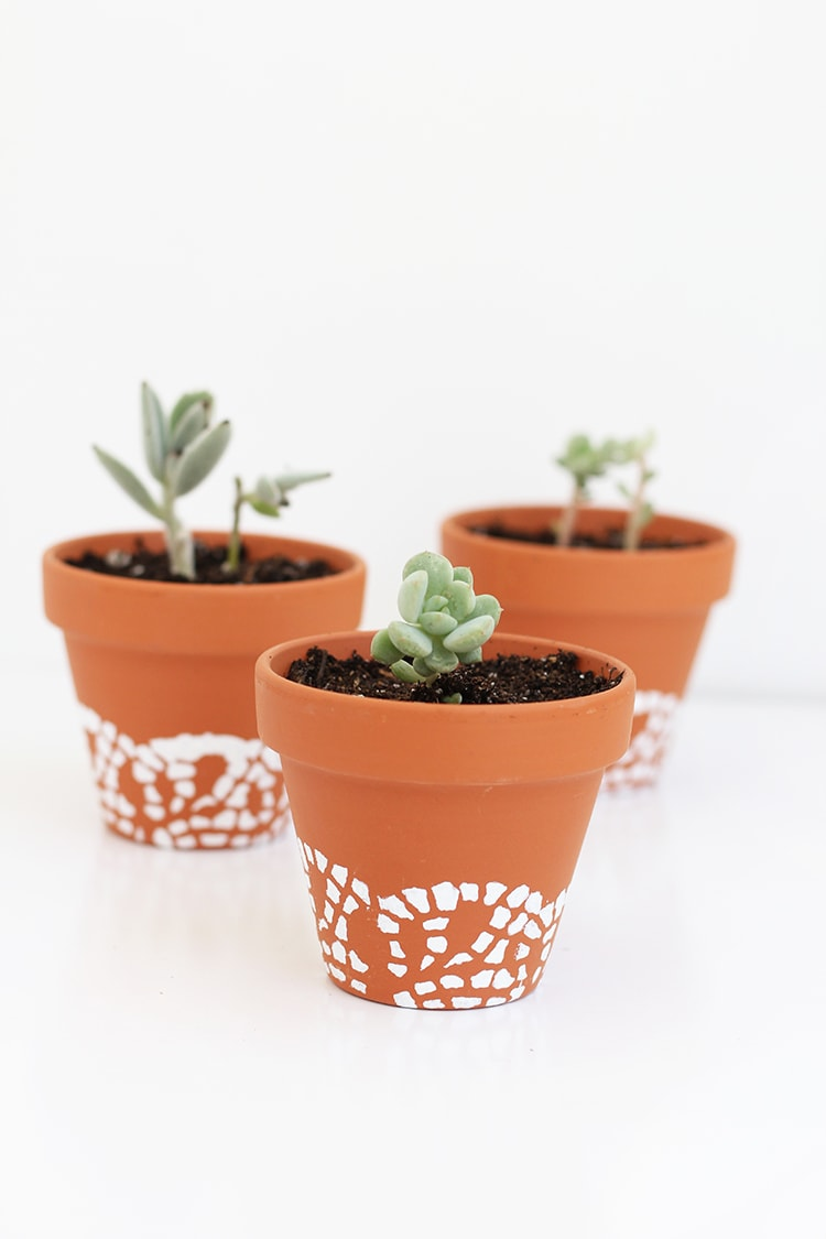 Doily painted flower pots for Flower pots with plants