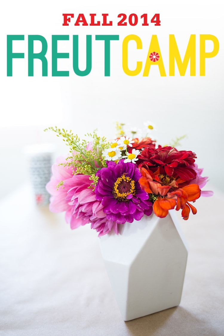 Announcing Freutcamp Fall 2014