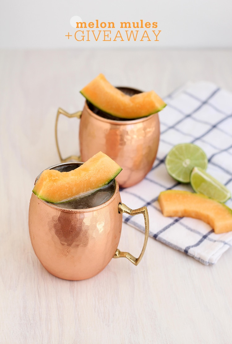 Melon Mules 1 Melon Mules + Birch Lane Giveaway