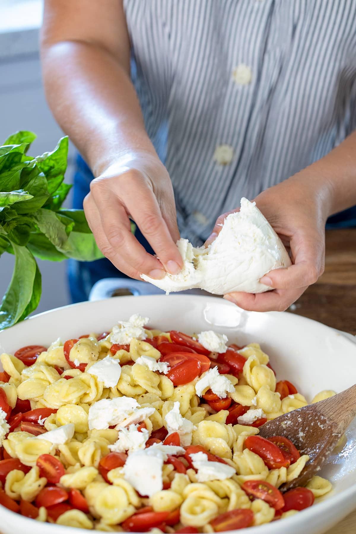 Orecchiette Caprese Pasta