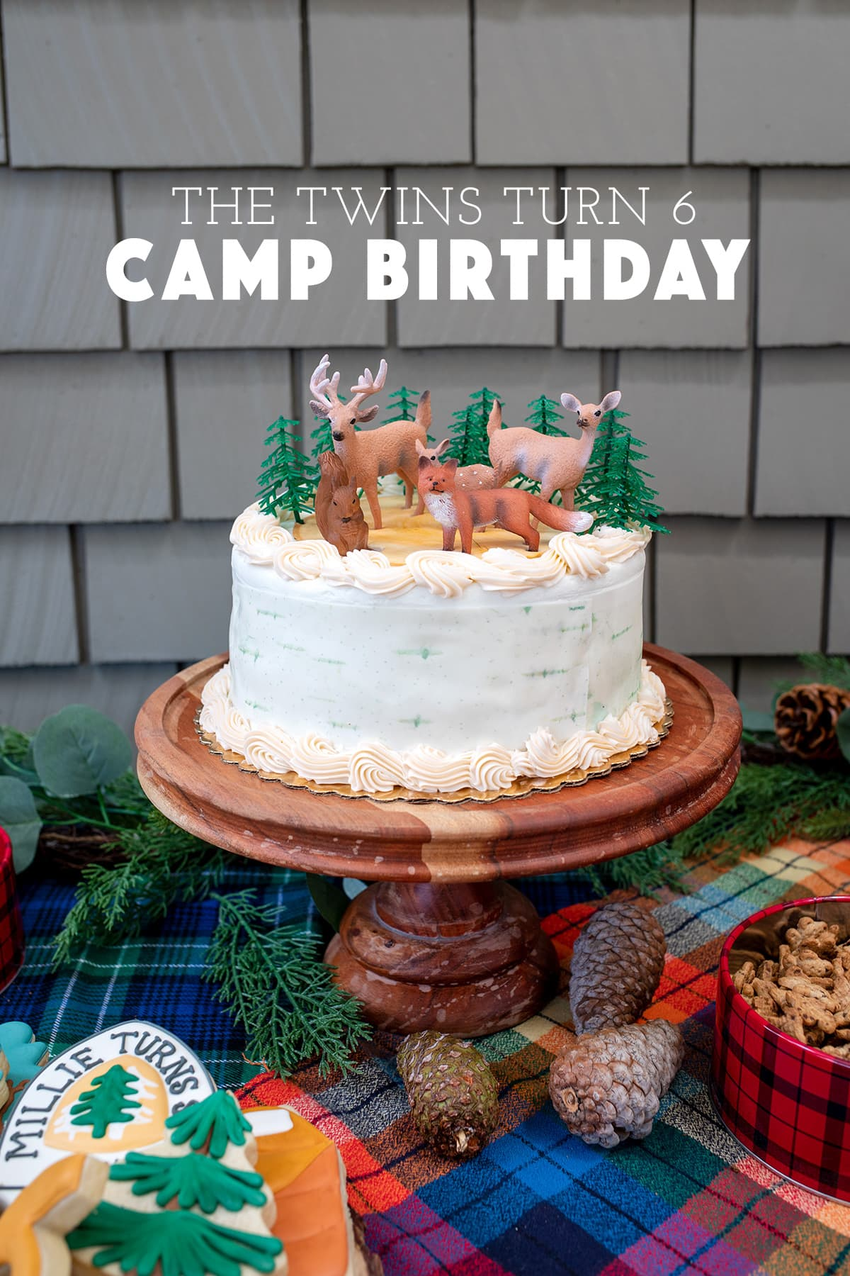 The twins turn 6 Camp Birthday Party